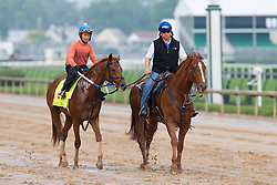 Derby 142 hopeful Gun Runner with Carlos Rosas, left up were on the track for training, Sunday, May 01, 2016 at Churchill Downs in Louisville.