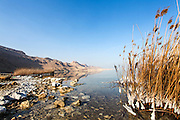Israel, Dead Sea, salt crystalization caused by water evaporation