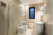 Interior, bathroom of a modern house
