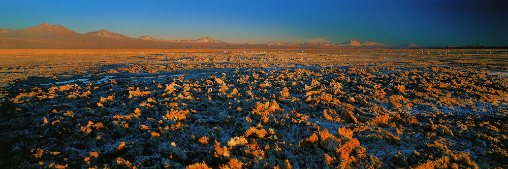 Atacama Salt flat at Sunset , Los Flamencos National Park , Chile