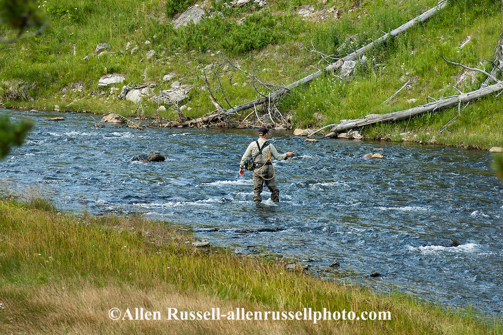 Fly fishing in yellowstone best fish 2017 for Yellowstone park fishing report