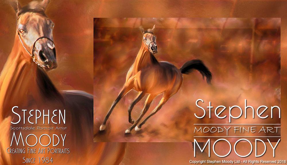 The Arabian Horse Fine Artwork by Stephen Moody - Scottsdale Portrait Artist and Master Photographer, Scottsdale, AZ