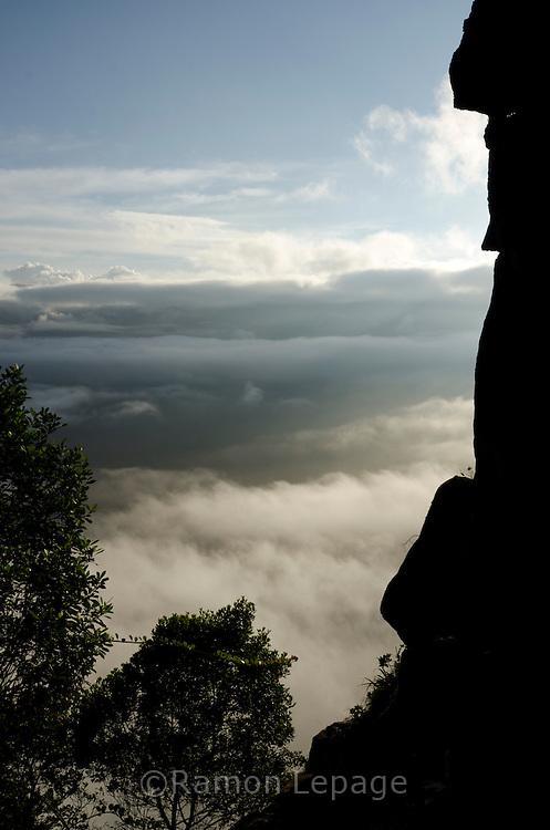 """AUYANTEPUY, VENEZUELA. Vista del ''Cañon del Diablo''  durante rappel del Salto Angel o conocido por lengua indígena Pemon como """"Kerepacupai Vena; es la caída de agua más grande del mundo con sus 979 metros de altura.  El Auyantepuy es el mayor de los tepuis del Parque Nacional Canaima con  sus 700 kms2. (Ramon lepage /Orinoquiaphoto/LatinContent/Getty Images)"""