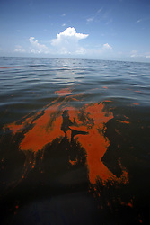 06 June 2010. Barataria Bay to Grand Isle, Jefferson/Lafourche Parish, Louisiana. <br /> Oil seeps into Barataria Bay, the fragile eco system that separates the Gulf of Mexico from Louisiana wetlands. The ecological and economic impact of BP's oil spill is devastating to the region. Oil from the Deepwater Horizon catastrophe is evading booms laid out to stop it thanks in part to the dispersants which means the oil travels at every depth of the Gulf and washes ashore wherever the current carries it. The Louisiana wetlands produce over 30% of America's seafood and are the most fertile of their kind in the world.<br /> Photo; Charlie Varley/varleypix.com