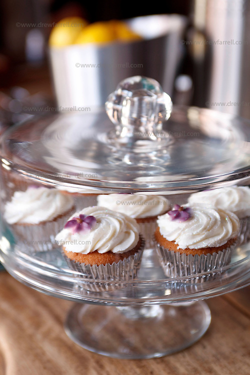Picture shows : Cupcake Detail...Cafe Gandolfi - Albion Street,Merchant City Area, Glasgow. Travel guide feature...Picture Drew Farrell. tel : 07721-735041......