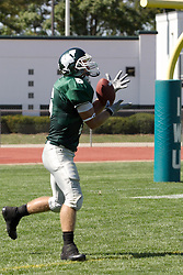 15 September 2007:  Robert Beauchamp catches a kick. The Titans stood toe to toe with the 25th ranked Lions through the first half but ended the game on the losing end of a 25-15 score at Wilder Field on the campus of Illinois Wesleyan University in Bloomington Illinois.