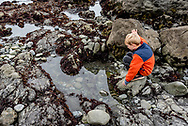 A young boy crouches to look in a tidepool at Glass Beach, Fort Bragg, in Mendocino County. Model released.