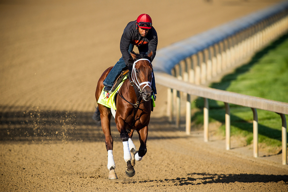 April 29, 2015: Itsaknockout gallops in preparation for the Kentucky Derby at Churchill Downs Louisville Ky. Alex Evers/ESW/CSM