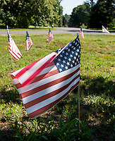 American flags were placed around the end of Cottonwood Ave. as well the front lawn of each home on Cottonwood down through Walker Street over the July 4th Holiday weekend.  (Karen Bobotas/for the Laconia Daily Sun)