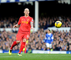 Liverpool's Martin Skrtel - Photo mandatory by-line: Dougie Allward/JMP - Tel: Mobile: 07966 386802 23/11/2013 - SPORT - Football - Liverpool - Merseyside derby - Goodison Park - Everton v Liverpool - Barclays Premier League