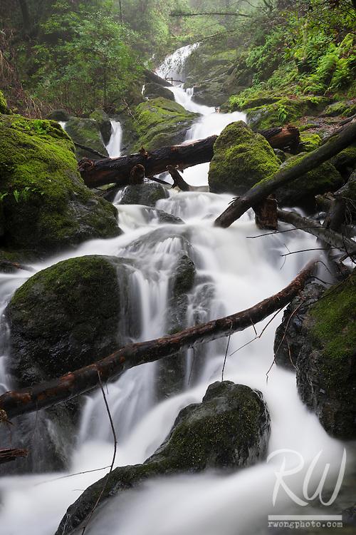 Cataract Falls / Mount Tamalpais Watershed, Marin County, California