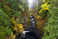 Fall colours along the Englishman River downstream of the Upper Falls in Englishman River Falls Provincial Park near Nanaimo, British Columbia, Canada.