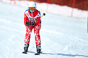 Schladming, Austria - 2017 March 21: Dagmar Unterwurzacher from Austria (56) competes in Alpine Skiing Competition while Special Olympics World Winter Games Austria 2017 on the &quot;Sepp-Walcher-Downhill&quot; (Slope 32) near the &quot;Tauernalm&quot; in Rohrmoos on March 21, 2017 in Schladming, Austria.<br /> <br /> Mandatory credit:<br /> Photo by &copy; Adam Nurkiewicz / Mediasport<br /> <br /> Adam Nurkiewicz declares that he has no rights to the image of people at the photographs of his authorship.<br /> <br /> Picture also available in RAW (NEF) or TIFF format on special request.<br /> <br /> Any editorial, commercial or promotional use requires written permission from the author of image.<br /> <br /> Image can be used in the press when the method of use and the signature does not hurt people on the picture.