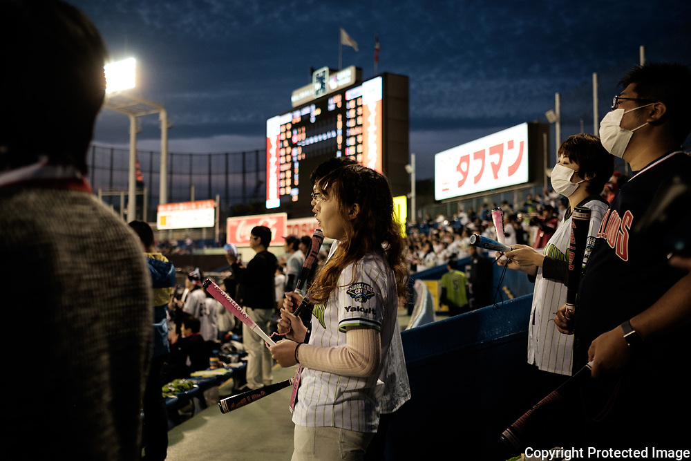 Supporters of The Tokyo swallows watch the match at the Jingu Baseball Stadium in Tokyo during a game Tokyo Swallows VS Hiroshima Carp, Japan. 21/04/2017-Tokyo, JAPAN