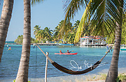 Kayakers paddle along the coast of South Water Caye, Belize.