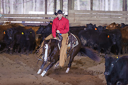April 30 2017 - Minshall Farm Cutting 2, held at Minshall Farms, Hillsburgh Ontario. The event was put on by the Ontario Cutting Horse Association. Riding in the Non-Pro Class is Ron Stelzl on Scarlet Catdancer owned by the rider.