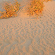 Cape Hatteras sand dunes at sunset
