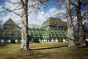 Schoenbrunn castle park. The Palmenhaus (Greenhouse).