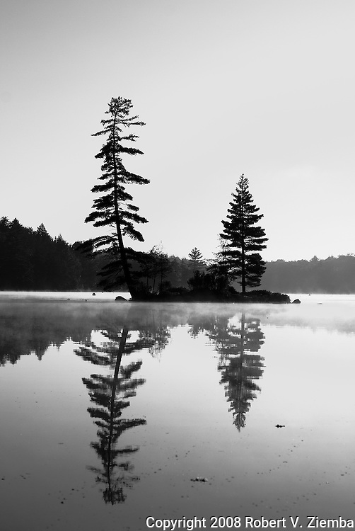 """Pine Island""-A black and white image of an Adirondack island with two pine trees sihlouetted against the sky and refecting off the water with fog."