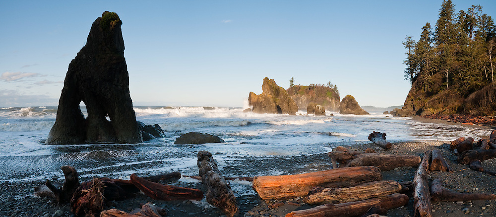Sea stacks, surf, driftwood, coastal forest at Ruby Beach, Olympic National Park, Washington, USA. Panorama stitched from 3 images.