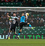 Dundee keeper Scott Bain clutches the ball under pressure from Celtic's Charlie Mulgrew - Celtic v Dundee - Ladbrokes Scottish Premiership at Dens Park<br /> <br />  - &copy; David Young - www.davidyoungphoto.co.uk - email: davidyoungphoto@gmail.com