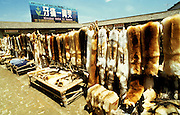 A fur market in China