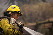 GENDER DIVERSITY ON THE FIRE LINES