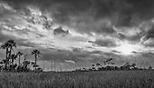 Florida Black & White Part 2