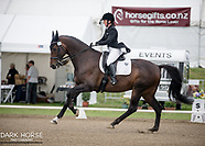 2017-03-09 HOY Dressage Oval FEI Prix St Georges