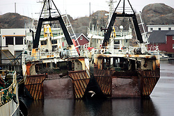 NORWAY LOFOTEN 29MAR07 - Factory trawlers in Stamsund harbour on the Lofoten islands...jre/Photo by Jiri Rezac..© Jiri Rezac 2007..Contact: +44 (0) 7050 110 417.Mobile:  +44 (0) 7801 337 683.Office:  +44 (0) 20 8968 9635..Email:   jiri@jirirezac.com.Web:    www.jirirezac.com..© All images Jiri Rezac 2007 - All rights reserved.