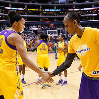 15 August 2014: Los Angeles Sparks forward/center Candace Parker (3), Los Angeles Sparks forward/center Sandrine Gruda (7) are seen during the players introduction prior to  the Los Angeles Sparks 77-65 victory over the Seattle Storm, at the Staples Center, Los Angeles, California, USA.