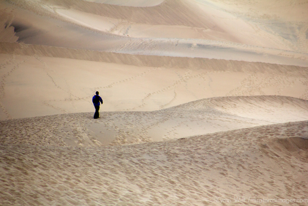 USA, California, Death Valley. Person walking in the Mesquite Flat Dunes.