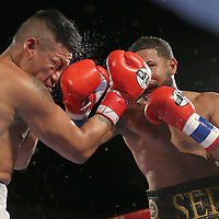 Cesar Seda lands a right hand to the face of Rogelio Casarez during a Fire Fist Boxing Promotions boxing match at the A La Carte Pavilion on Saturday, August 12 , 2017 in Tampa, Florida.  (Alex Menendez via AP)