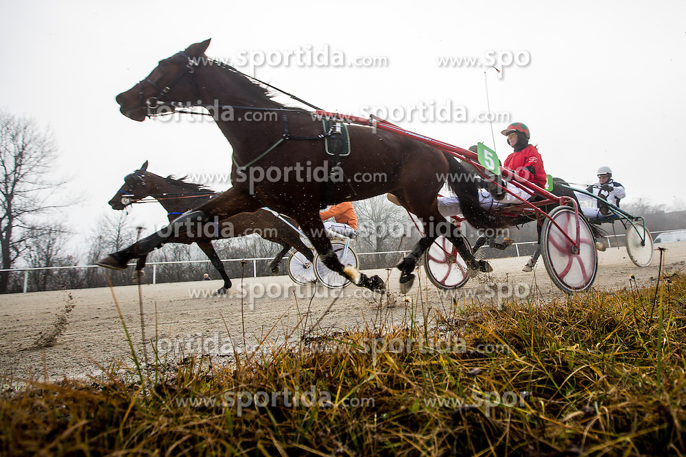 Harness racing competition at hippodrome Stozice on 26. December 2015 in , Ljubljana, Slovenia. Photo by Grega Valancic / Sportida
