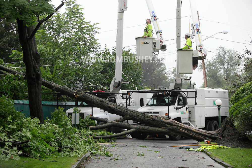 Middletown, NY - Workers from Nelson Tree Service try to remove a tree that fell across a road and onto wires during a thunderstorm on Aug. 22, 2009. Winds from the storm knocked down many trees in the area.