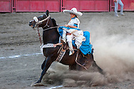 October 1st, 2011. Pico Rivera, California. Traditional charros (Mexican cowboys) compete in a Mexican Rodeo. The competition at the Pico Rivera Sports Arena is a display of horsemanship and lasso skills. Pictured is a female rider sliding her horse..PHOTO © JOHN CHAPPLE / www.johnchapple.com