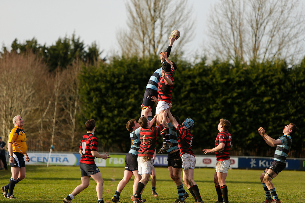AIL Rugby at Old Balreask, Navan, 6th March 2016<br /> Navan RC vs Trinity<br /> Colm Treacy stretches in a Navan lineout<br /> Photo: David Mullen /www.cyberimages.net / 2016