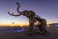 The Monumental Mammoth at Dawn<br /> by: Girl Scout Gold Award Recipient Tahoe Mack, Mentor and Protector of Tule Springs Representative Sherri Grotheer, and artists Luis Varela-Rico and Dana Albany<br /> from: Las Vegas, NV<br /> year: 2019<br /> <br /> The Monumental Mammoth project will depict a life-sized steel Colombian mammoth skeleton collaged with metal found objects to tell the story of Tule Spring National Monument's past, present, and future. The sheer size and struggle of the mammoth's stance is a representation of the universal call to protect what the earth has given humanity. As a community, we are called together to protect the fossils of our past and the education of our future. Dana Albany and Luis Varela-Rico are pulling together the sleek elements of the interior steel structure and the intricate weavings to represents the distinctive community that is Las Vegas.It also tells the story of a rising feminine power, and shows all women of any age that anything is possible!<br /> <br /> URL: https://tulemammothproject.wordpress.com<br /> Contact: tulemammothproject@gmail.com<br /> <br /> https://burningman.org/event/brc/2019-art-installations/?yyyy=&artType=H#a2I0V000001AVtMUAW My Burning Man 2019 Photos:<br />