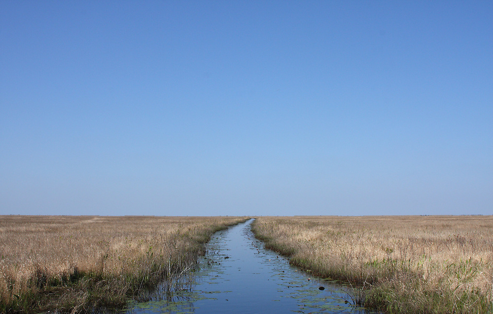 Endless Wetlands, Early Spring, White Lake Wetlands Conservation Area, Vermilion Parish