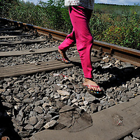 Young Syrian refugee girl walking only in flip flops along an old railway line following her family, just after passing across the border with Serbia. Many of them have walked up to 50 kilometers. Refugees, mostly from Syria, simply walked through a hole in the border fence with Serbia by the hundreds on Sunday, only to be stopped by police and held in a field a kilometre away.  The official border reception centres are full and refugees must camp on the ground, dependent on food donated by volunteer groups