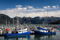 Fishing boats of the upper Lynn Canal commercial fishing fleet and other small boats moored at the small boat harbor in Haines, Alaska. Commercial fisherman landed $11.5 million in seafood in Haines in 2012 providing roughly $326,000 in fish tax to the Haines Borough.