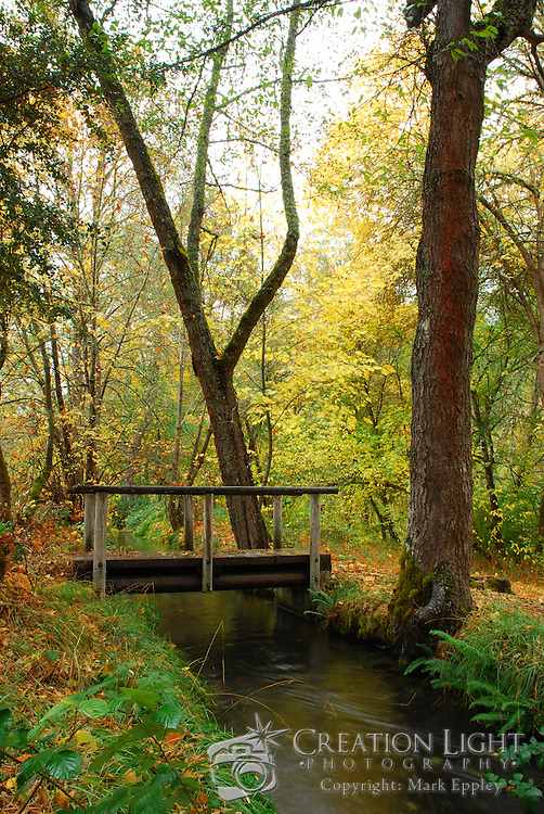 A canal passes parallel to the Applegate River near the McKee Covered Bridge in southern Oregon.  A wood bridge in a park allows people to cross over the canal to enjoy the woods and at this time of year the fall color of the leaves.