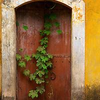 Wall Art: Doors and Windows
