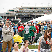 Spectators in the Jockey Club Suites had an overhead view of the race and the infield as they watch the 4th race before the 136th running of the Kentucky Derby at Churchill Downs Saturday May 1, 2010. Photo by David Stephenson
