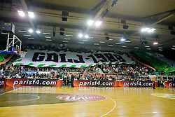Spectators and fans Green Dragons at Euroleague basketball match of Group C between KK Union Olimpija, Ljubljana and Maroussi B.C., Athens, on October 29, 2009, in Arena Tivoli, Ljubljana, Slovenia. Olimpija lost 75:81.  (Photo by Vid Ponikvar / Sportida)