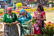 Zapotec women selling fresh cut flowers at the Sunday market in Tlacolula de Matamoros, Mexico. The regional street market draws thousands of sellers and shoppers from throughout the Valles Centrales de Oaxaca.