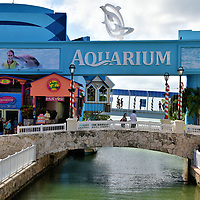 """Interactive Aquarium at La Isla Shopping Village in Cancun, Mexico <br /> The word """"Interactive"""" perfectly describes what to expect at the Interactive Aquarium at La Isla Shopping Village. You will be enthralled by the 140 species of marine life. Your children will enjoy the tactical feel of the Touch Tanks and watching the sea lions. The Delphinus Trek lets you feed schools of colorful fish. You can also sign up to swim with the bottlenose dolphins. There are educational programs available in the auditorium. Plus the Aquarium Trek lets you go underwater wearing a unique diving helmet."""
