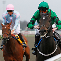Kempton 27th March