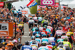 Peloton with during the 2nd lap on Mur de Huy at 2019 La Flèche Wallonne (1.UWT) with 195 km racing from Ans to Mur de Huy, Belgium. 24th April 2019. Picture: Pim Nijland | Peloton Photos<br /> <br /> All photos usage must carry mandatory copyright credit (Peloton Photos | Pim Nijland)