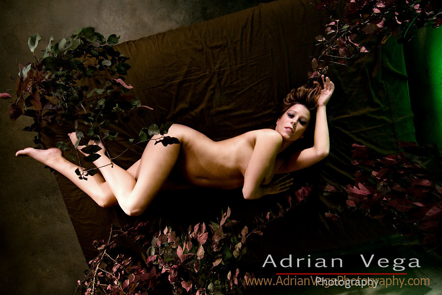 glamour in the forest. boudoir female image